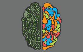 L_R brain
